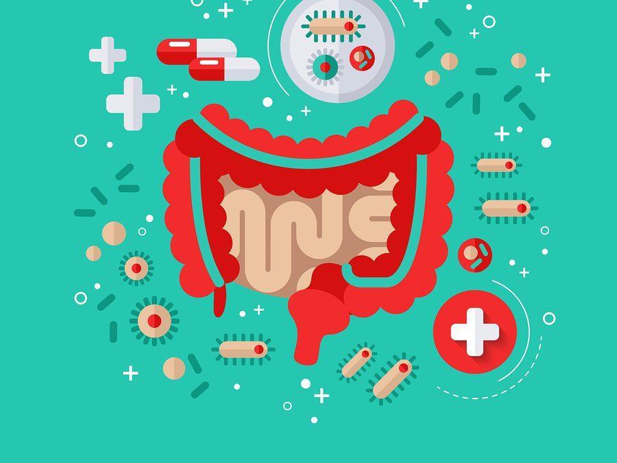 SIBO Diet : Causes, Symptoms, Treatment