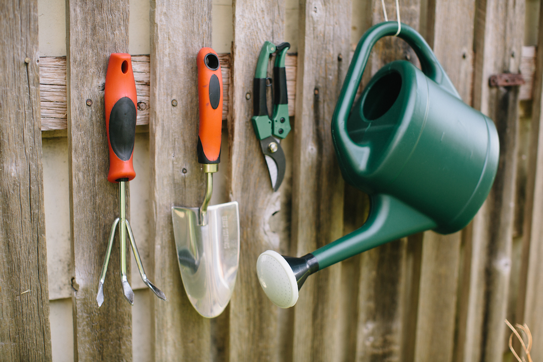 8 Gardening Tools Every Beginners Should Have